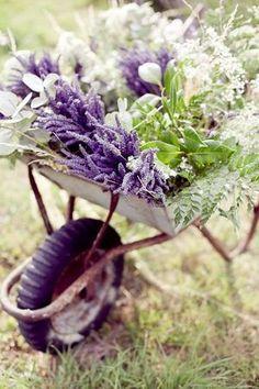 Shabby wheelbarrow with beautiful flowers!