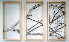 framed branches... I think so :)