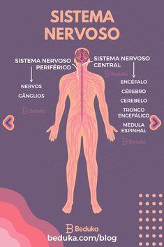 O corpo humano é constituído pelos sistemas: cardiovascular, respiratório, digestivo, nervoso, endócrino, excretor, reprodutor, esquelético, muscular, imunológico e linfático. Esses sistemas estão conectados mas exercem funções específicas e vitais no organismo. Medical Anatomy, Study Planner, School Motivation, Color Psychology, Study Hard, Fitness Planner, Medical School, Nursing Students, Biology