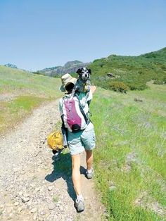 Gypsy has this hiking thing down, with Carmel resident and travel writer Linda Mullally doing the heavy lifting on a dog-friendly trail. (Photo by David S. Mullally)