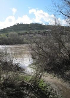 The Two Seasons of the Salinas River in Paso Robles