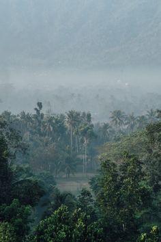 [IMAGES] Guillaume Flandre a ramené des #images époustouflantes de son voyage en Indonésie. Découvrez son travail sur le site de #fisheyemagazine ! [Photo: © Guillaume Flandre] #photo #photography #photographie #travel #travelphotography #indonesia #indonésie #voyage #nature #landscape #paysage #vegetal