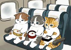 Kitten Drawing, Cute Cat Drawing, Cute Kawaii Drawings, Cute Animal Drawings, Animal Sketches, Cute Kawaii Animals, Kawaii Cat, Cute Baby Animals, Cute Cats And Kittens