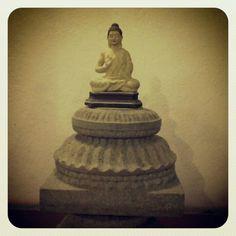Always Buddha