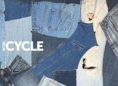 Benjamin Moore - Cycle