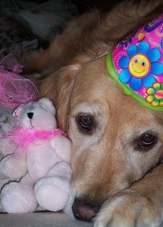 Rosie's 4th Birthday by Lianne