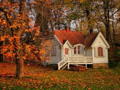 Autumn Grass Photography Great Walk Amazing Forest Landscape Colors Nice Nature Trees Hut Architecture Cool Beauty Beautiful Lovely Scenery Villa Pretty House Season View Leaves Wallpaper. Forests: Autumn Grass Photography Great Walk Amazing Forest Landscape Colors Nice Nature Trees Hut Architecture Cool Beauty Beautiful Lovely Scenery Villa Pretty House Season View Leaves Wallpaper for HD 16:9 High Definition 1080p 900p 720p Wide 16:10 5:3 Widescreen WUXGA WXGA WGA Standard 4:3 5:4…