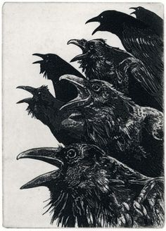 "One of the shadow organizations ""The Ravens"" sworn enemy of The Templars."