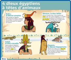 Fiche exposés : 4 dieux égyptiens à têtes d'animaux