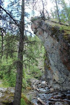 Sunshine Meadows - Rock Isle Lake - Picture of Sunshine Meadows, Banff - Tripadvisor Yoho National Park, National Parks, Mountainous Terrain, Lake Pictures, The Province, Rocky Mountains, Trip Advisor, Sunshine