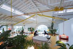 There Are More Than 2,000 Plants In This Lush Coworking Space | Co.Design | business + design
