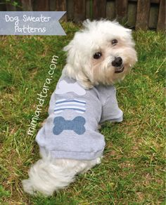 Sew a cute dog pajamas with this premium pattern available in nine sizes! Dog clothes patterns with easy step by step instructions. Make dog clothes! Dog Sweater Pattern, Dog Pattern, Pattern Sewing, Sweater Patterns, Free Pattern, Vest Pattern, Pdf Patterns, Le Plus Grand Chien, T Shirt Chien