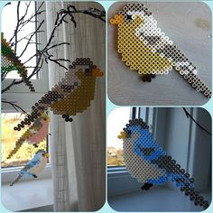 Birds hama beads by skoglundsiri