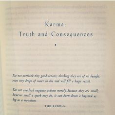 via | the quote of your life Karma: Truth & Consequences. Do not overlook tiny good actions, thinking they are of no benefit; even tiny drops of water in the end will fill a huge vessel. Do not overlook negative actions merely bc they are small; however small a spark may be, it can burn down a haystack as big as a mountain. The Buddha