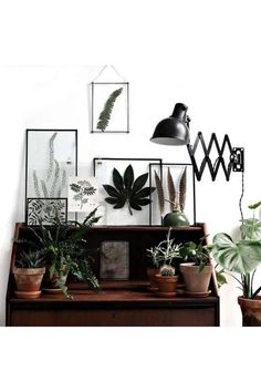 """niftyncrafty: """"DIY Transparent Frames with Pressed Leaves // Froken Overspringhandlings This looks amazing! Like seriously this combines but love of plants and not being able to keep them alive successfully. Because their beauty will remain in the. Framed Leaves, Pressed Leaves, Deco Boheme Chic, Wall Decor, Room Decor, Room Art, Decoration, Interior Inspiration, Interior And Exterior"""