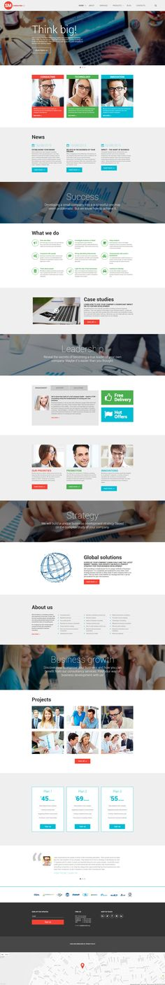 Website Theme , SM Consulting Co
