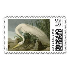 >>>Order          	White Heron by John James Audubon Stamp           	White Heron by John James Audubon Stamp We provide you all shopping site and all informations in our go to store link. You will see low prices onReview          	White Heron by John James Audubon Stamp Here a great deal...Cleck Hot Deals >>> http://www.zazzle.com/white_heron_by_john_james_audubon_stamp-172812579100068267?rf=238627982471231924&zbar=1&tc=terrest
