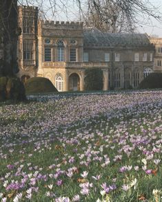Forde Abbey and Gardens Old Money, Nature Aesthetic, Aesthetic Vintage, Beautiful Architecture, Baroque Architecture, Pretty Pictures, Aesthetic Pictures, Aesthetic Wallpapers, Light In The Dark