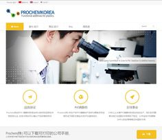 프로켐 다국어(영어/중국어/국어) 홈페이지 제작사례 - PVC안정제제조업체