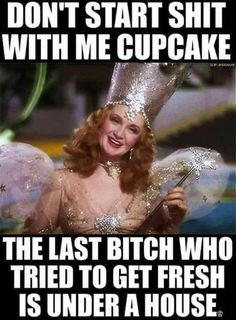 Glenda the kick-ass bitch witch! - Sarcasm Meme - Sarcasm Meme ideas - The post Glenda the kick-ass bitch witch! appeared first on Gag Dad. Funny Shit, Haha Funny, Funny Jokes, Hilarious, Funny Stuff, Funny Man, Funny Life, Sarcastic Laugh, Sarcastic Quotes