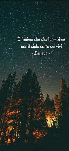Seneca Quotes, Special Words, Tumblr, Self Help, The Dreamers, Einstein, Best Quotes, Philosophy, Psychology