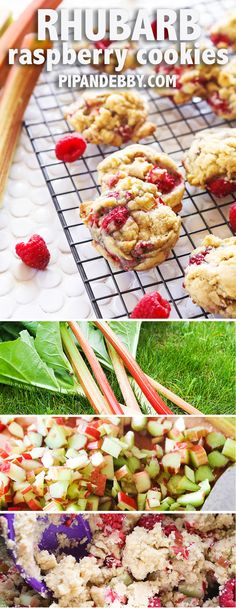 Rhubarb Raspberry Cookies Recipe - rhubarb and raspberries make the perfect team in these delicious cookies! My new favorite way to use up fresh rhubarb! Rhubarb Cookies, Raspberry Cookies, Rhubarb Desserts, Raspberry Muffins, Raspberry Recipes, Rhubarb Recipes, Fruit Recipes, Cookie Recipes, Dessert Recipes