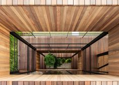 Tree grows through voids in Hamada Design's Glass + Wood building