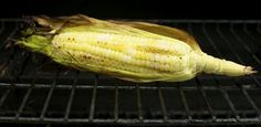 Cubit's Organic Living » summertime bbq grilled sweet corn on the cob