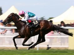 """""""Time Test proved to be in a different league to his rivals"""" and lived up to the favouritism in the Tercentenary Stakes at Royal Ascot by 3½ lengths. Frankie Dettori was on board to record his 51st Royal Ascot victory.  Royal Ascot meeting Day 3, 18 June 2015.   Peacock and Richard Hughes finished second, Mustadeem and Paul Hanagan third. Full result here.Photo source: X"""