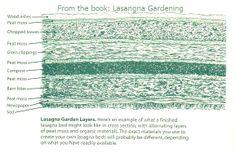 Lasagne gardening - layering