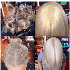 Hair Color Trends 2018 – Highlights Learn HOW TO take your client from golden to icy blonde in this step by step by Marcus Byerly. It's all about toning. Icy Blonde, Platinum Blonde Hair, Golden Blonde, How To Tone Blonde Hair, Ice Blonde Hair, Bleach Blonde Hair, Light Ash Blonde, White Blonde, Dark Hair