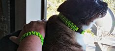 Paracord 'Kitty & Me' Matching Collar/Bracelet by BigKittyDesigns, $16.00