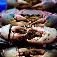 Jak i jak długo gotować kraby Shrimp, Seafood, Meat, Sea Food, Beef