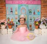 Belle's Fleurs Flower Shop Backdrop DIY Photography Cake Smash Backdrop, Diy Backdrop, Backdrops, Cake Smash Photography, Photography Ideas, Wedding Photography, Themed Parties, Party Themes, Birthday Fun