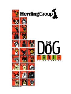 The Herding Group Poster of The Dog Table of the EleMUTTs features illustrations of the American Kennel Club dog breeds in the Herding Group. From the Australian Cattle Dog to the Border Collie to the Agility Training For Dogs, Dog Agility, Dog Training Tips, Horses And Dogs, Dogs And Puppies, Doggies, Dog Table, Groups Poster, Deaf Dog