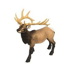 Dry Desert, Animal Action, Forest Hill, Ceramic Animals, Mammals, North America, Safari, Like4like, Wildlife