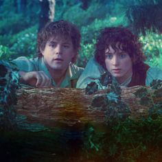 And here's Frodo and Sam, just for good measure. I swear, seeing them automatically makes me so sappy.