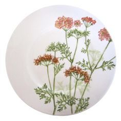 Althea Nova Salad plate 22cm Villeroy & Boch