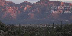 Oro Valley, AZ in Arizona Oro Valley, Tucson, Great Places, Four Square, Grand Canyon, Arizona, Community, Travel, Viajes