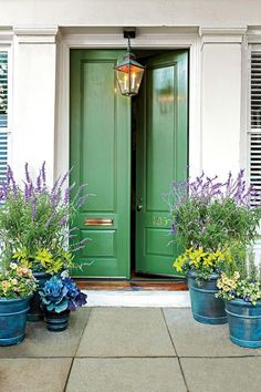 Green to Envy - Front Door Container Gardens That Will Impress Guests - Southernliving. It's not easy being green, but it certainly is captivating! Allow this bold color to greet guests at the front door, along with complementary verdant and seafoam colored flowers and foliage, such as salvia, rosemary, coleus, and kale.