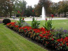 Poděbrady Park Sidewalk, Spa, City, Plants, Side Walkway, Walkway, Cities, Plant, Walkways