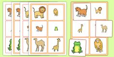 This size matching activity is the perfect starter activity for your lesson, and is a fun way to get the class ready to learn! A great resource that ties in with the topic of Dear Zoo, it'll make a brilliant addition to your lesson. Dear Zoo, Safari Animals, Preschool Ideas, Curriculum, Activities, Learning, Places, Fun, Resume
