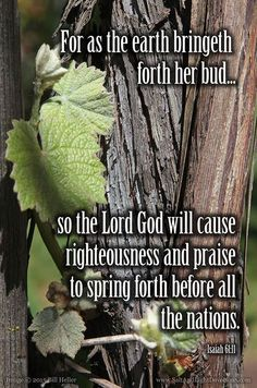 For as the earth bringeth forth her bud and as the garden causeth the things that are sown in it to spring forth; so the Lord God will cause righteousness and praise to spring forth before all the nations.--Isaiah 61:11 KJV    http://ift.tt/2dlIsJq  #Bible #inspirational
