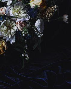 Photography - Sharon Radisch