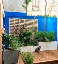 Végétaliser le mur d'un patio en ville avec des grands bacs plantés et un support en bois sur lequel faire grimper des plantes/ #patio #mur #plantes #végétal #grimpantes