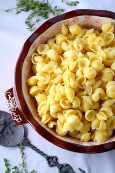 Shell Pasta for 3 Cheese Jalapeno Mac & Cheese