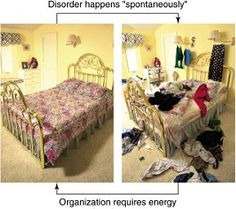 Entropy in real life