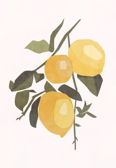 This modern, boho-style abstract lemon print is perfect for your kitchen, bedroom or office. Lemon Kitchen Decor, Kitchen Art, Office Wallpaper, Food Wallpaper, Illustration Art, Illustrations, Minimalist Art, Botanical Prints, Oeuvre D'art