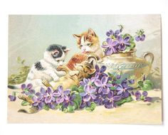Kitty Cat Playtime Postcard