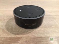 «The Future of x is y» - Einprägsame Statements dieser Art hören wir immer wieder von unterschiedlichen Technikkonzernen, meistens aus dem Silicon Valley. Der neueste grosse Trend sind Sprachassistenten. Nach Apple mit Siri und Google mit Ok Google betritt jetzt auch Amazon den Markt - mit dem Assistenten Alexa und der passenden Hardwarelineup, dass sich unter der Echo-Reihe versammelt hat.